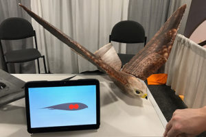 The Robird at CES 2017